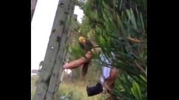 Daiane Amadora Putinha Foi Com Seu Marido Tarado Para o meio do mato e colocou a câmera pra filmar toda a putaria